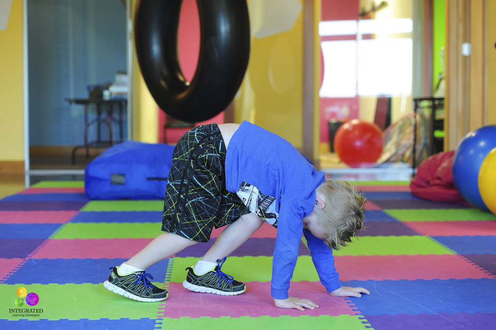 Fun Animal Yoga poses for developing gross and fine motor skills to prep the brain for higher learning