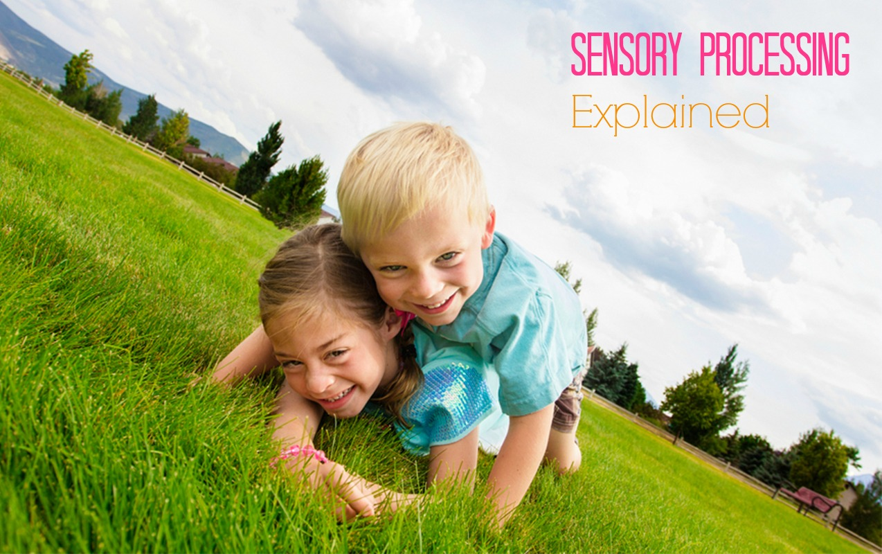 What the Experts can Help You Understand about Sensory Processing